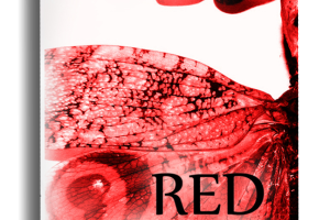 """RED"" by Nicole Collet"