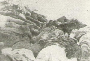 victims of the novi sad massacre