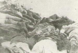 victims of the novi sad massacre