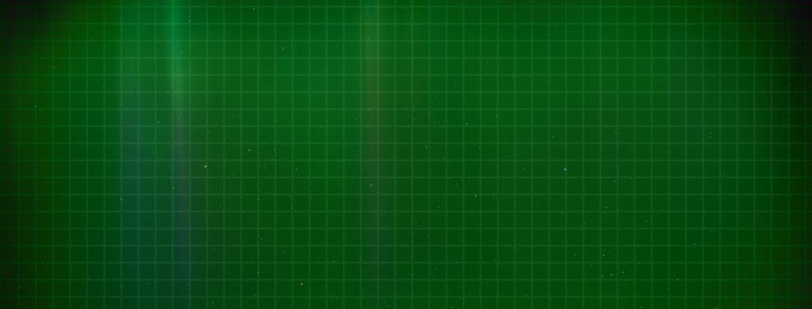 green_back